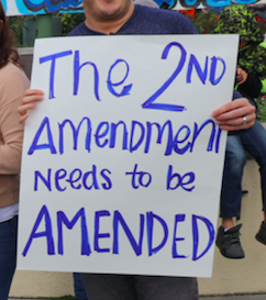 """NH Dem: Repealing Second Amendment """"A Good Discussion To Have"""""""