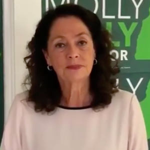 """Molly Kelly's """"Unsustainable"""" Attack on the Paid Family Medical Leave Issue"""