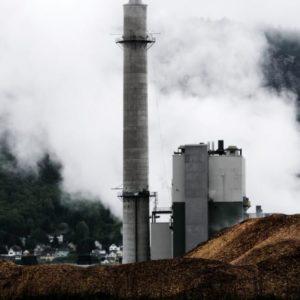 Biomass Emits More Carbon Than Coal. So Why Do N.H. Dems Love It?