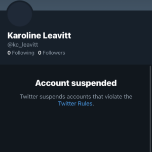 Stefanik Comms Director Blocked by Twitter Amid GOP Leadership Fight